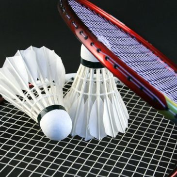 Badminton Bassin Axonais